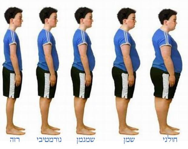 הדרגתיות ההשמנה